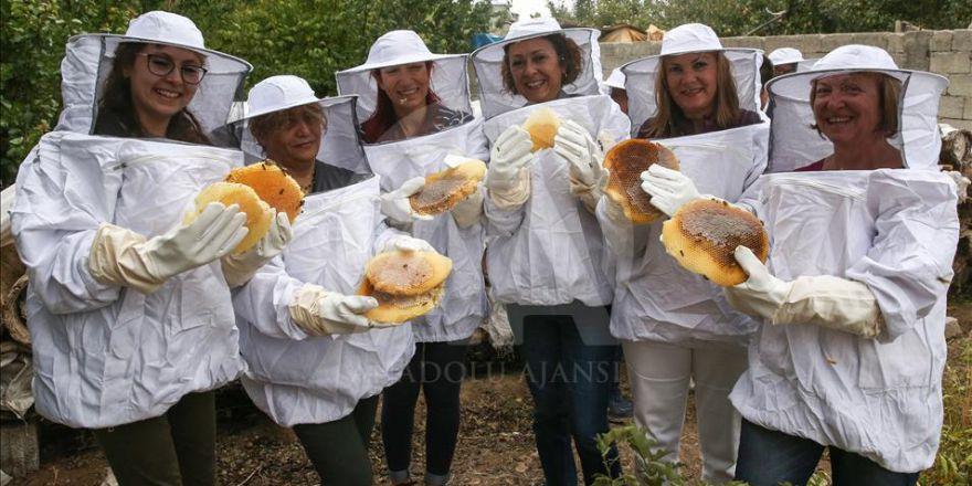 Satın aldıkları balın hasadını kendi elleriyle yaptılar