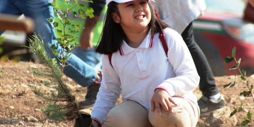 Adana'da Milli Ağaçlandırma Günü