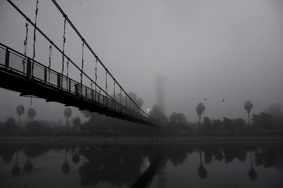 Adana'da sis etkili oldu 1
