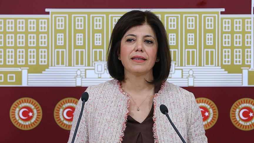 HDP'li Beştaş SEGBİS ile savunma yapacak