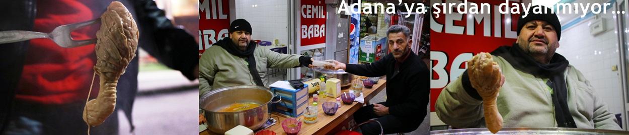 Adana'ya Şırdan dayanmıyor…