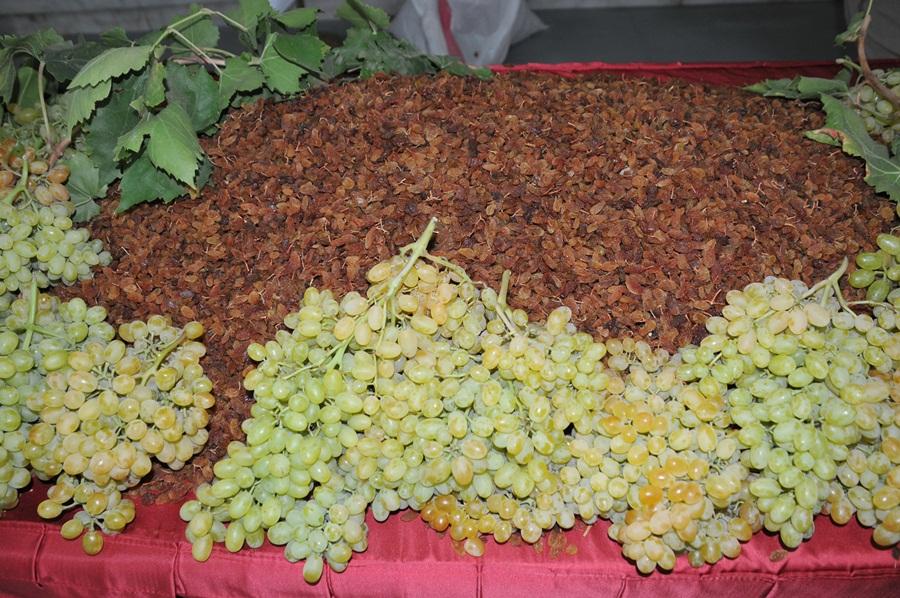 TMO ile üzüm sektörü tonda 600 dolar kazandı