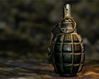 Kozan'da el bombası ve aydınlatma fişeği bulundu?