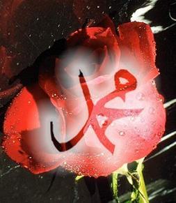 Efendimizin Ramazan Hayatı?