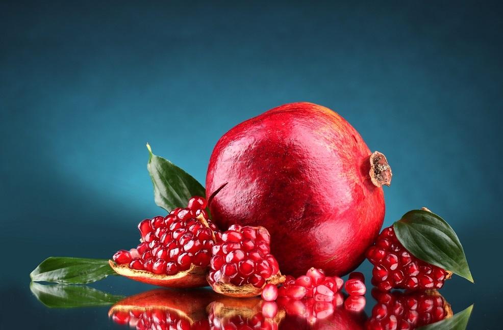 Ege Yaş Meyve Sebze İhracatçıları Birliği 2 URGE Projesine birden start verdi