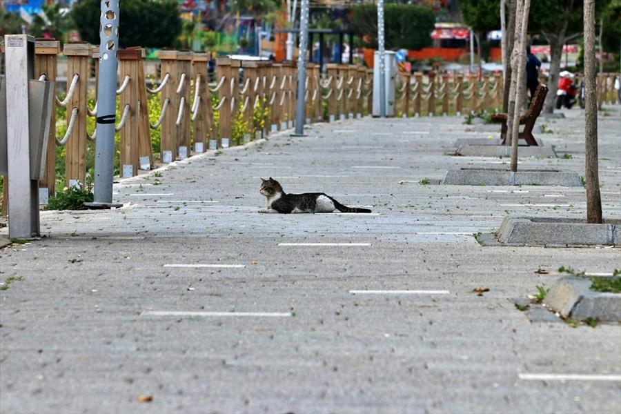 Akdeniz'de sokaklar boş kaldı