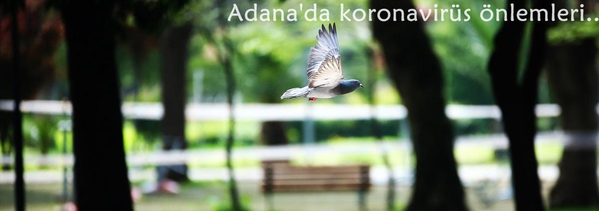 Adana'nın en işlek cadde ve sokakları boş kaldı..