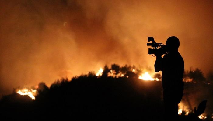 Adana Kozan'daki orman yangını kontrol altına alındı