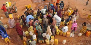 Somaliler yaşamıyor bir türlü ölememek bu