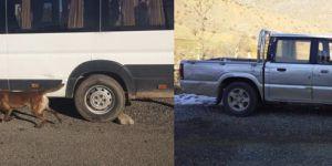 Bombalı saldırıda kullanılacak 2 araç yakalandı