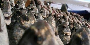 Kılıç Deniz Ürünleri, Rusya'ya balık ihracatında lider konumda