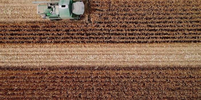 Bakan Pakdemirli'den mısır üreticilerine müjde