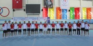 Türkiye Cimnastik Şampiyonası, Mersin'de düzenlenecek