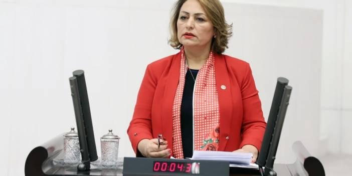 """CHP'li Şevkin: Depreme karşı """"Fay Hattı Kanun Teklifi"""""""