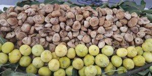 Cennet meyvesi kuru incirin ihracat yolcuğu 26 Eylül'de başlayacak