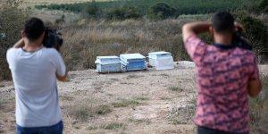 Arıların soktuğu kovan hırsızlığı şüphelisi öldü