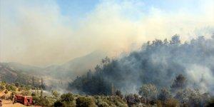 Amanoslar'daki bahçe yangını