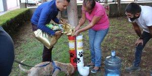 Sokak hayvanları için su borusundan mama ve su kabı yaptı