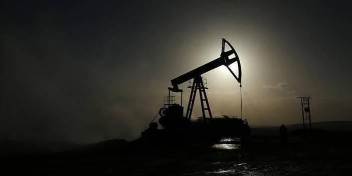 Kovid-19 nedeniyle petrol fiyatı 31 ayın en düşük seviyesinde