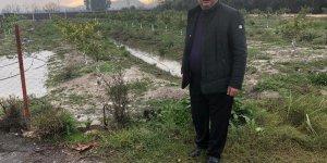 MHP'li Varlı zarar gören alanları inceledi
