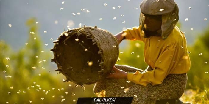Oscar adayı 'Bal Ülkesi' izleyicilerle buluşacak