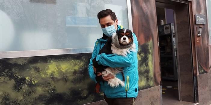 Koronavirüs evcil hayvanlardan bulaşmıyor