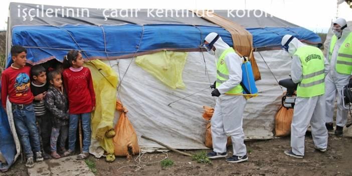 """Tarım işçilerinin """"çadır kentinde"""" koronavirüs tedbirleri"""