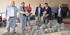 Karaisalı Belediyesi 30 Bin Adet Lavanta Fidesi Dağıttı