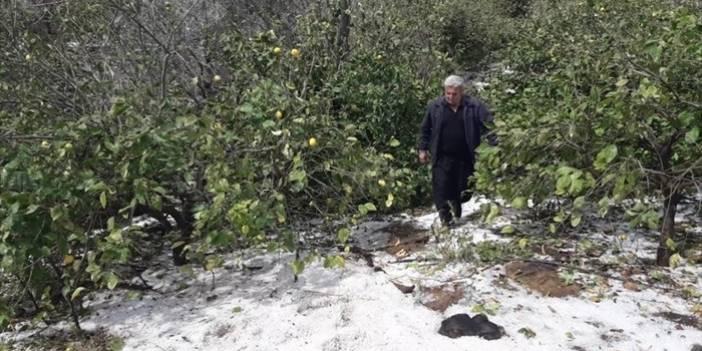 Mersin'de dolu yağışı hayatı olumsuz etkiledi