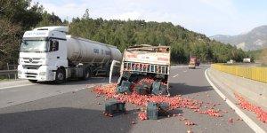 Adana'da elma yüklü kamyonet devrildi