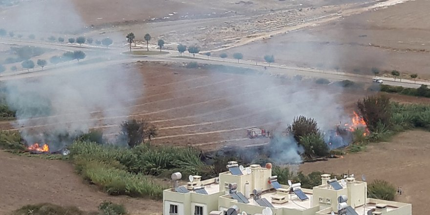 Şambayadı TOKİ evleri önündeki sazlık alan yandı..